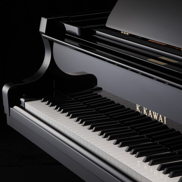 Kawai GX5