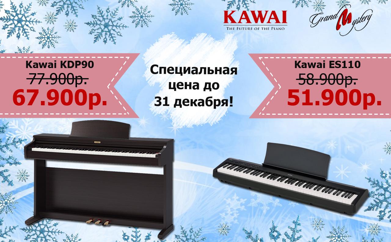 Специальная цена до 31 декабря!